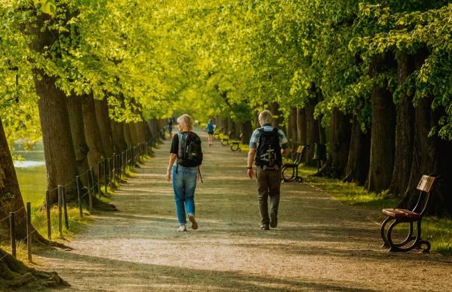 dos personas andando por un parque