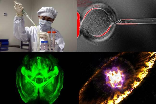 Varios de los hitos científicos más importantes de 2013. / Varios