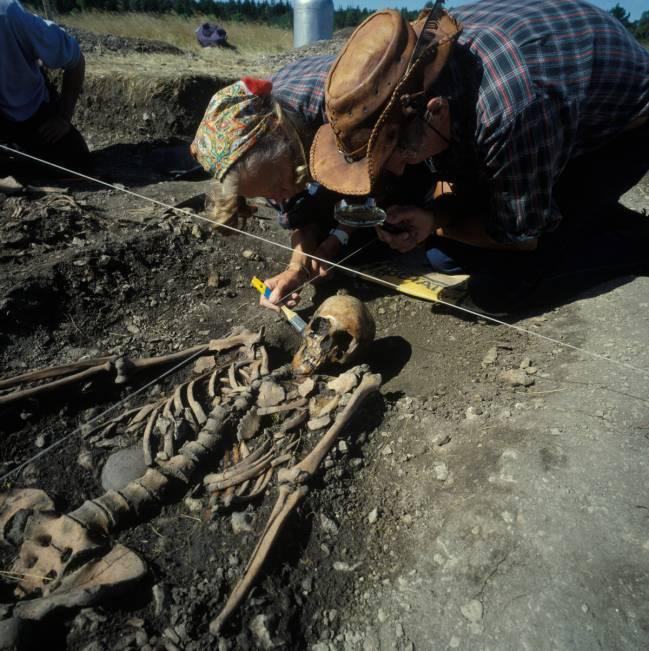 Fotografía de las excavaciones y los restos de un cazador-recolector en Gottland, Suecia. Imagen: Göran Burenhult