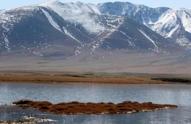 El Catálogo limnológico de los lagos de Mongolia ha estudiado más de 12.000 lagos y lagunas esteparias en Mongolia.