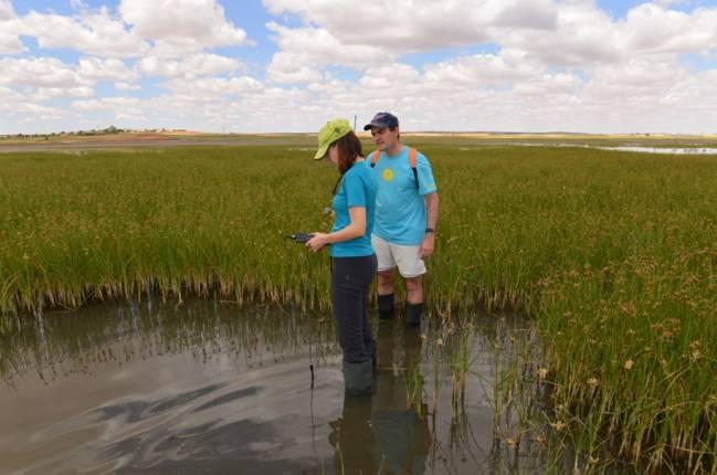 Medida de parámetros químico-físicos en las aguas de la laguna durante la época húmeda.