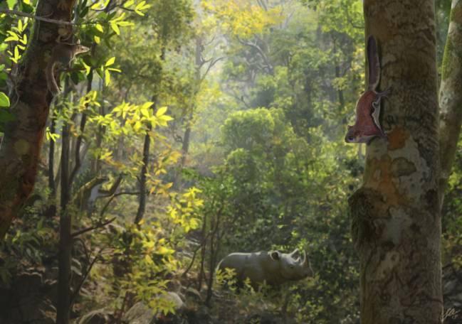 Reconstrucción paleontológica de una ardilla voladora (primer plano) en los ambientes forestales de la región septentrional (Cataluña y sur de Francia) hace unos diez millones de años por Oscar Sanisidro (Vertebrate Paleontology. Biodiversitiy Institute, University of Kansas).