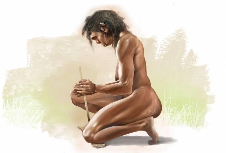mujer Homo erectus