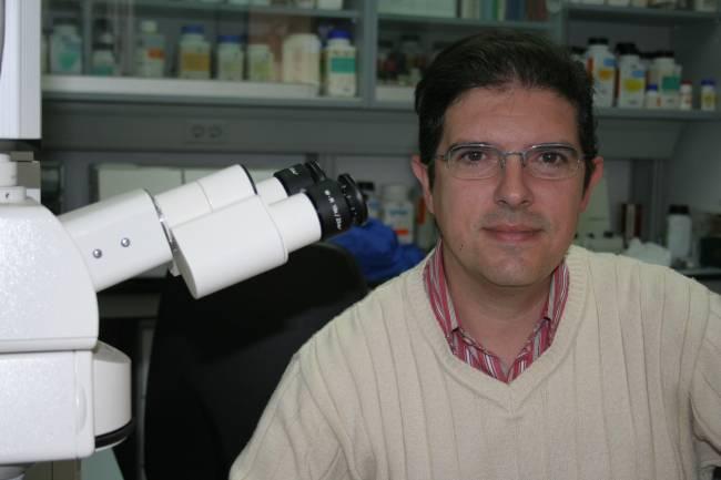 El investigador José Julio Ortega