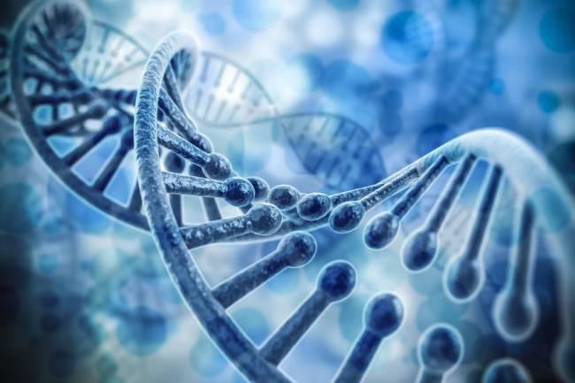 Investigadores describen cómo han encontrado una manera para medir directamente la capacidad de polarización eléctrica del ADN por primera vez en la historia. / Fotolia