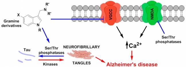Nueva estrategia contra la enfermedad de Alzheimer