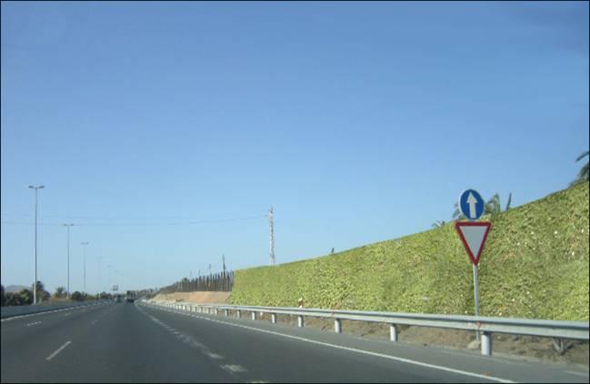 Nuevas pantallas acústicas vegetales instaladas en una autovía de Las Palmas de Gran Canaria. Fuente: UPM