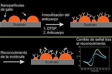 Nanopartículas de Galio sobre Silicio: una nueva plataforma para el desarrollo de biosensores