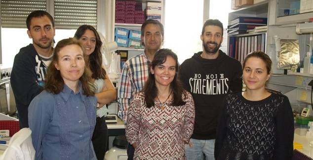 Trabajo del Centro de Investigación del Cáncer de Salamanca y científicos de Estados Unidos