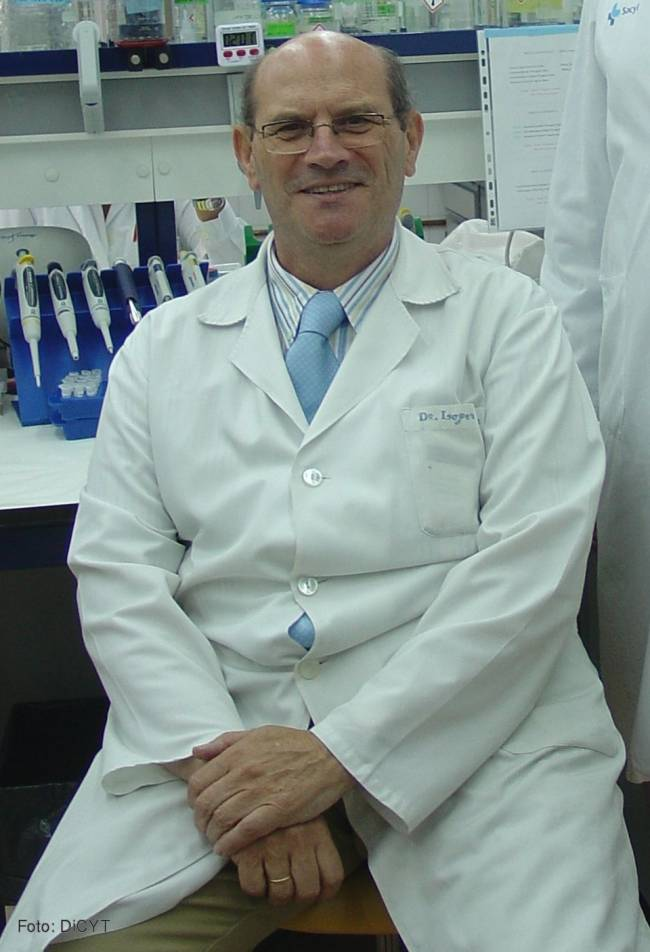 La falta de la proteína ALK-1 induce hipertensión en ratones, según publica la revista científica 'Diseases Models and Mechanisms'