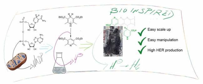 Esquema de funcionamiento del material obtenido comparado con sistemas naturales o sintéticos con fragmentos moleculares parecidos.