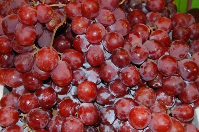 Las uvas han sido sometidas a luz ultravioleta.