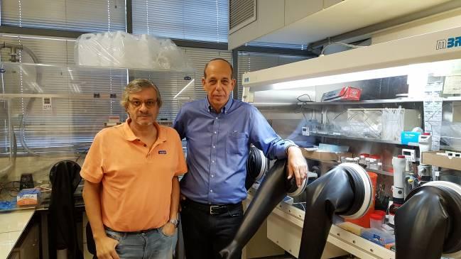 Los profesores Juan Bisquert, de la Universitat Jaume I, y Arie Zaban, de la Universidad de Bar-Ilan de Tel-Aviv. Foto: UJI.