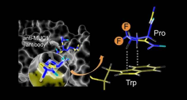 Investigadores del Grupo de Química Biológica y del Grupo de Bioconjugación de Proteínas de la Universidad de La Rioja