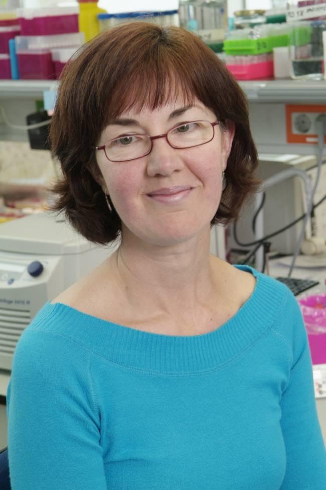 La investigadora del CSIC Paloma Pérez