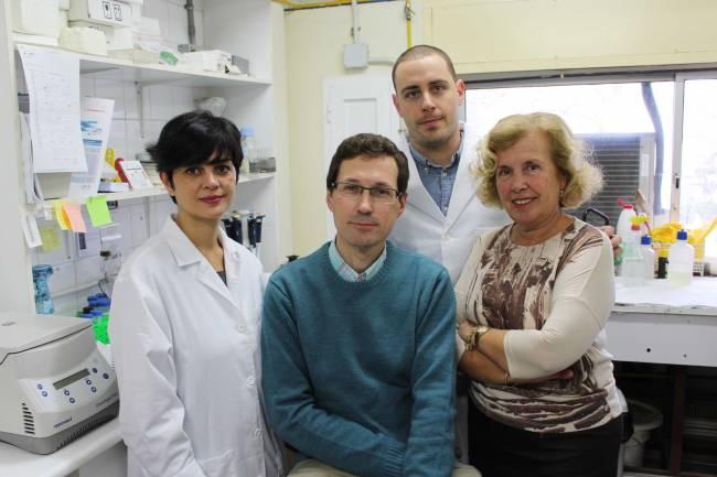 Investigadores del grupo 'Transmisión de señales en células de mamífero' de la Universidad de Sevilla / Fundación Descubre