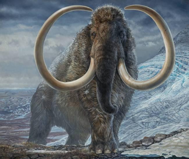 Ilustración de un mamut lanudo adulto