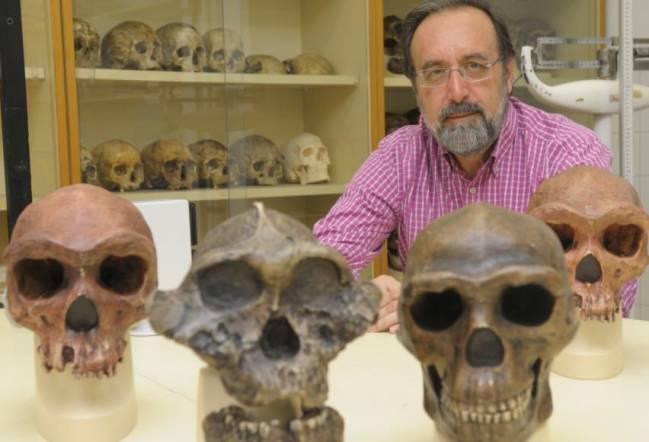 El catedrático Daniel Turbón, coautor del estudio científico, es especialista en antropología molecular y forense y en origen y evolución de los homínidos.