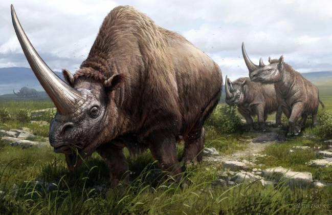 Reconstrucción artística de rinocerontes