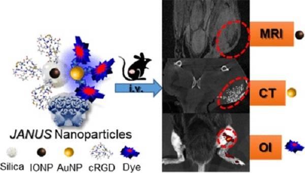 Composición y aplicación de la nanoplataforma JANUS
