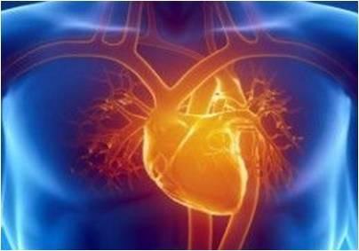 Se ha demostrado que un tratamiento con ultrasonidos mejora las propiedades curativas de las células madre cardíacas.