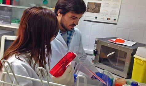 Investigadores de la UCA trabajando en los laboratorios de la universidad.