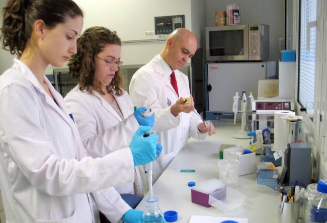 Investigadores del grupo Inmunobiología tumoral de la Universidad de Jaén / Universidad de Jaén