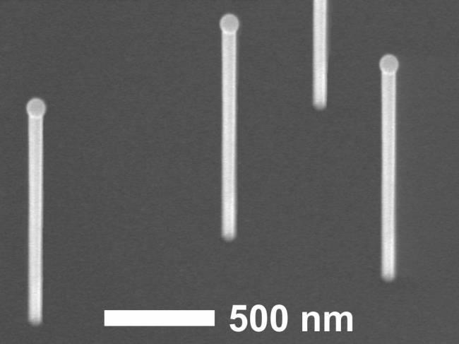 Imagen de nanohilos de arseniuro de galio crecidos sobre un sustrato de silicio. Sobre los nanohilos se pueden observar las gotas de galio que catalizan su crecimiento vertical.