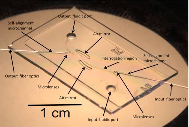 Imagen del chip, donde se aprecia el canal en zig-zag y los 'espejos de aire'.