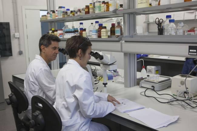 Investigadores del Laboratorio NeuroFun de la UJI