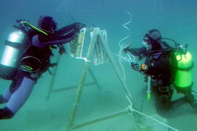 Investigadores de la Universidad de Cádiz encuentran los restos del Fougueux.