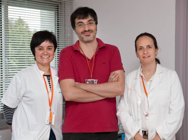 equipo_de_investigación