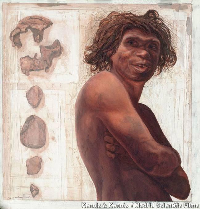 Las fórmulas se han usado para estimar la estatura del Homo Antecessor. Ilustración: Kennis & Kennis.