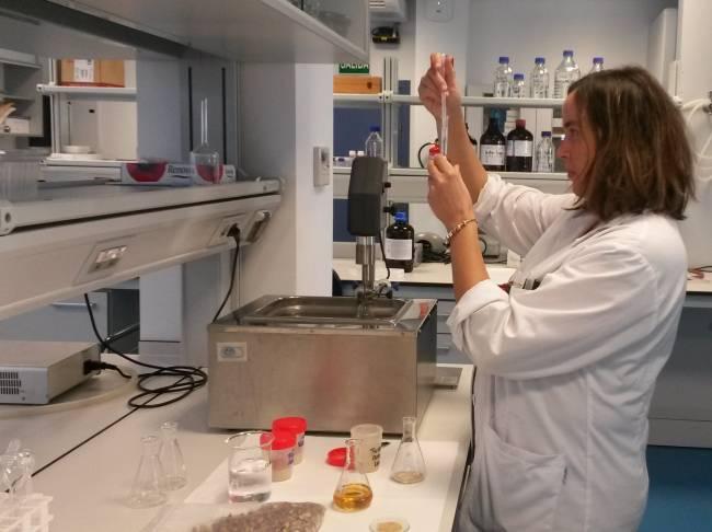 Zulema Piñeiro, una de las autoras del estudio, del Centro IFAPA Rancho de la Merced de Jerez de la Frontera (Cádiz), en el laboratorio / Fundación Descubre