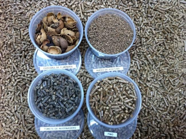 Muestras de biomasa / Fundación Descubre