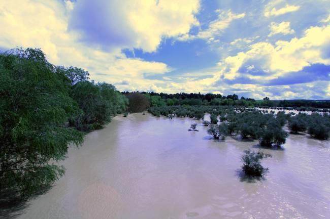 Río Guadalquivir en una zona cercana a Villanueva de la Reina (Jaén) en 2013, donde se produjeron desbordamientos / Fundación Descubre