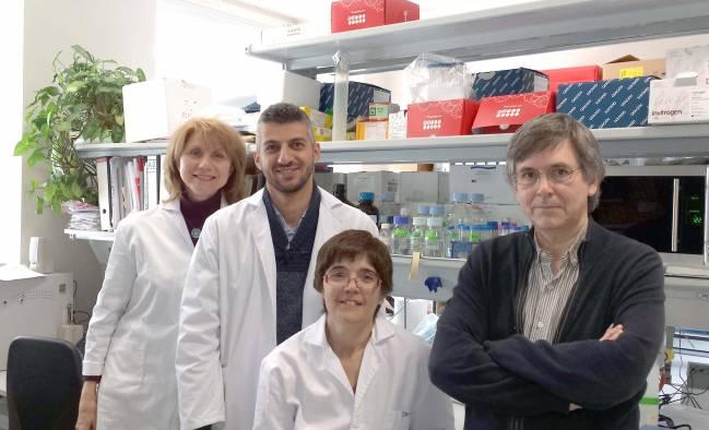 Antonio Alcina (derecha) y Fuencisla Matesanz (centro) junto al resto de investigadores del grupo / Fundación Descubre