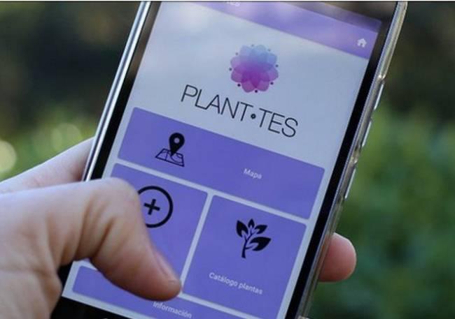 Planttes
