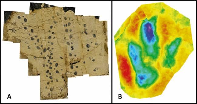 Rastro de Megalosauripus y mapa de profundidad