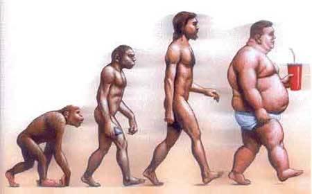 evolución del hombre moderno
