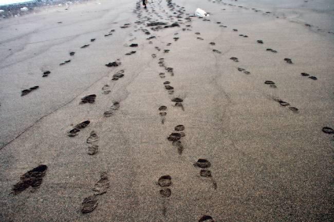 El cálculo funciona perfectamente tanto si los individuos van corriendo como si van andando. / Christian Haugen