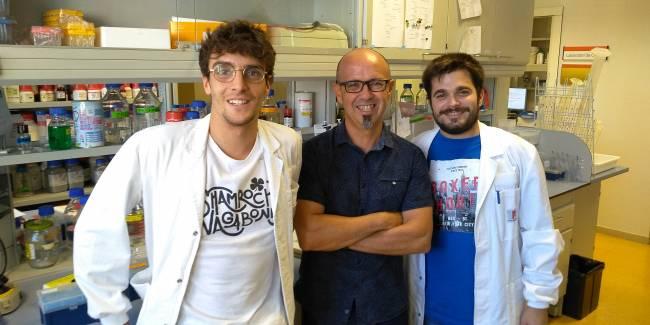 Jordi Pujols, Salvador Ventura y Samuel Peña