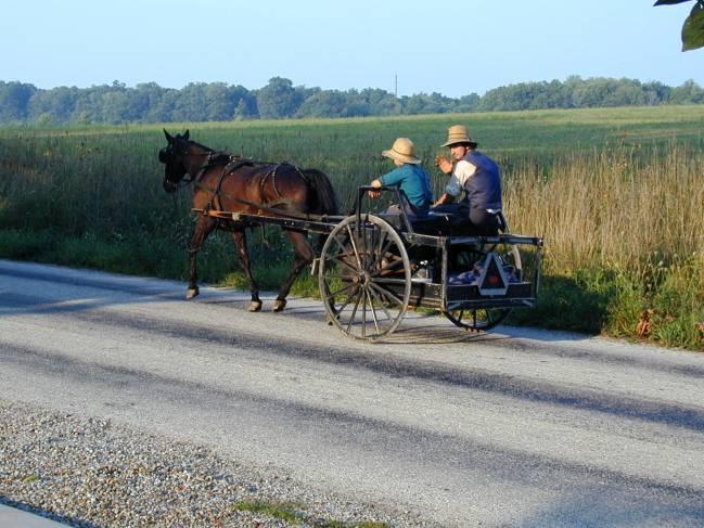 Integrantes de la comunidad amish se desplazan con un carro. / IDIBELL.