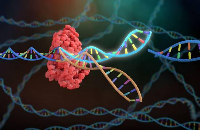 Herramienta de edición genética