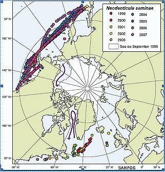 Mapa de la migración de Neodenticula seminae desde el Pacífico hasta el Atlántico, a través del Polo Norte.