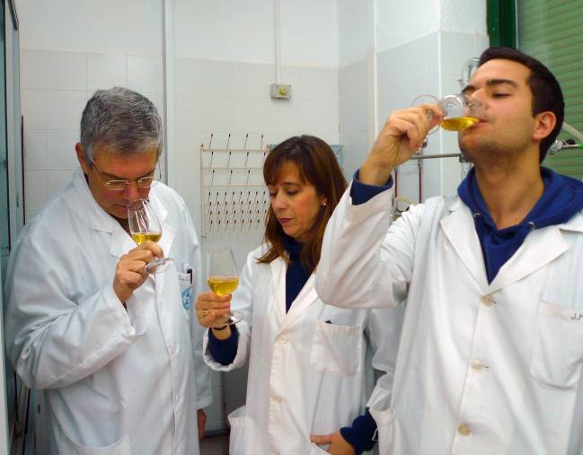 Investigadores del grupo Viticultura y Enología 'Vitenol' de la Universidad de Córdoba durante una cata / Fundación Descubre