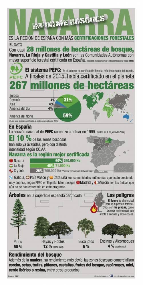 Infografía explicativa sobre la distribución de la superficie forestal en España. / Efe