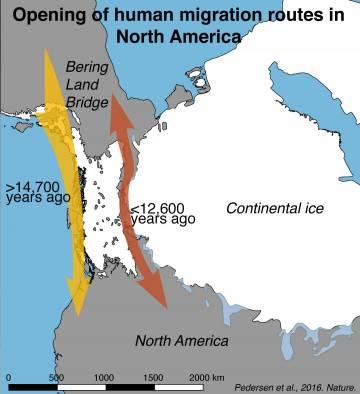 Mapa de la apertura de las rutas de migración humana en América del Norte reveladas por los resultados presentados en este estudio / Mikkel Winther Pedersen