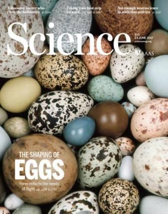 Portada de la revista Science