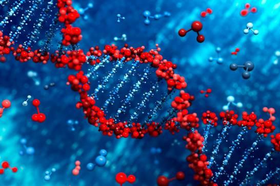 Un-estudio-genetico-para-identificar-el-